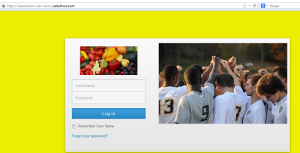 My dev org login page