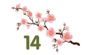 Spring 14 logo