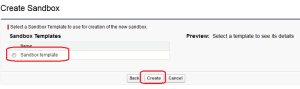 Partial Data Sandbox Creation - Step 3
