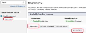 Partial Data Sandbox Creation - Step 1
