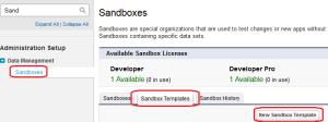 Sandbox Template
