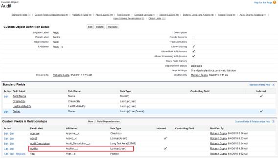 Audit Custom Object