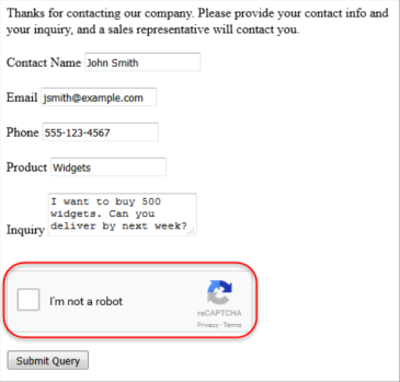Web-to-Lead: reCAPTCHA Web Form Validation